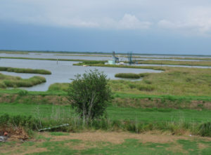 Pointe-au-Chien-backyard-cut-by-Big-Oil-by-Jordan-Flaherty1-300x221, Cultural extinction, National News & Views World News & Views