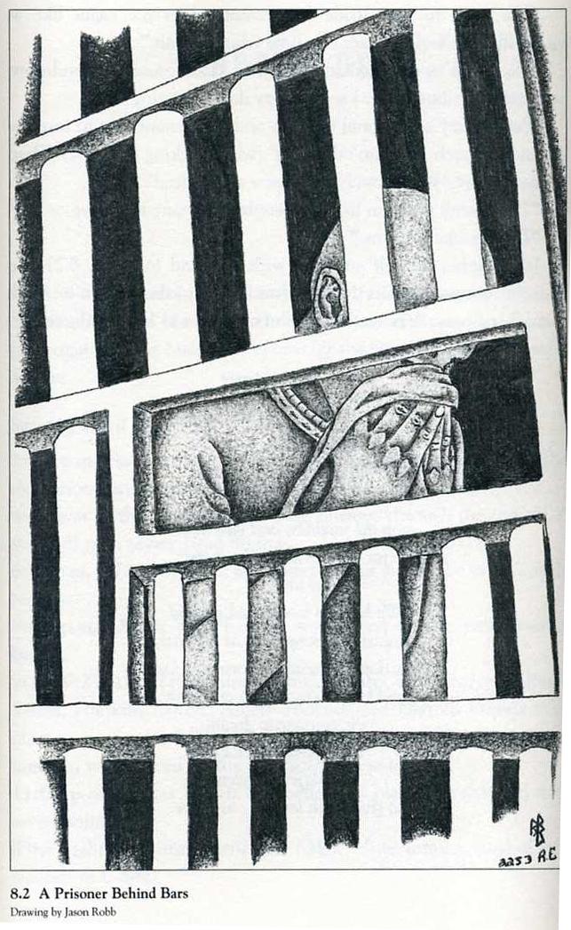 by-Jason-Robb1, Lucasville prisoners: If we must die, Behind Enemy Lines