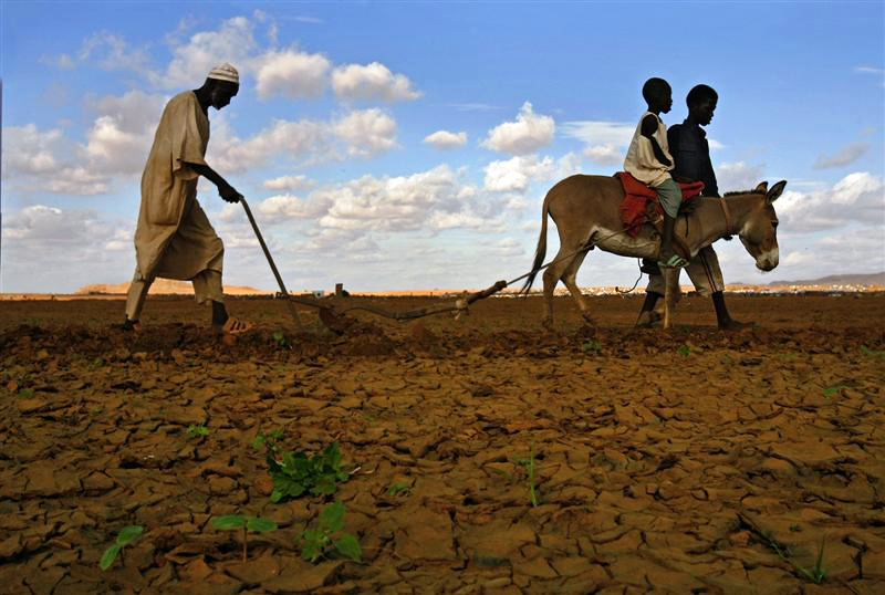 African-farmer-children-donkey-plowing, Massive land grabs in Africa by U.S. hedge funds and universities, World News & Views