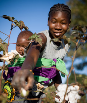 Cameroonian-woman-cotton-farmer, Should Africa be an ally of the West or China? The case of Cameroon and Côte d'Ivoire, World News & Views