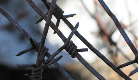 barbed-wire, California, the land of the gulag, National News & Views