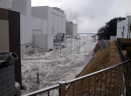 fukushima and the nuclear pushers san francisco bay view