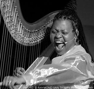 Destiny-Muhammad-Harpist-from-the-Hood, Wanda's Picks for August 2012, Culture Currents