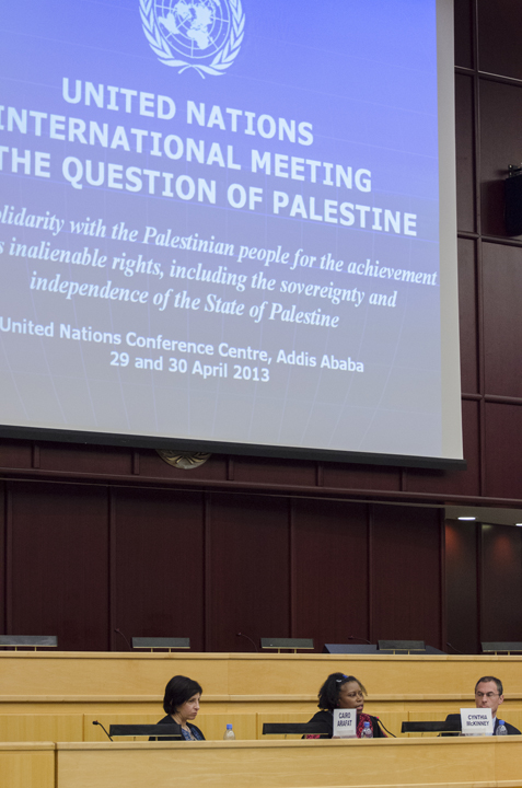 UN Meeting on Palestine, Cynthia McKinney on panel 042913 by Yosuke Kobayashi, web
