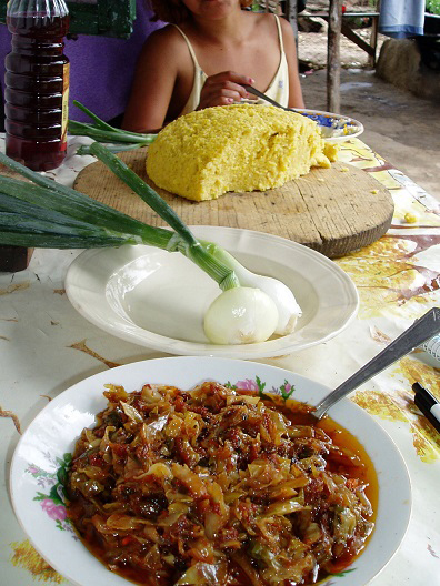 Typical-Gypsy-meal-shak-te-mas-cabbage-meat-onion-cornbread-by-Chuck-Todaro, African Americans and the Gypsies: a cultural relationship formed through hardships, World News & Views