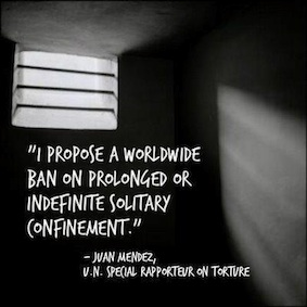 Juan Mendez quote re worldwide ban on solitary