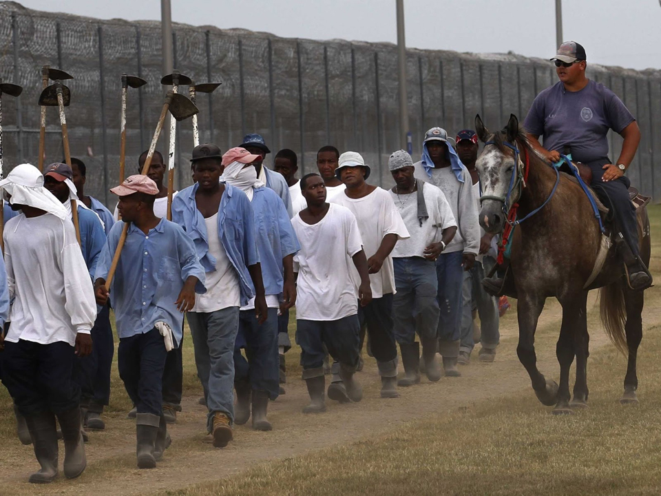 Angola-prisoners-return-from-farm-work-web, UN Human Rights Committee finds US in violation on 25 counts, National News & Views