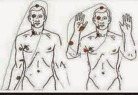 Dr. Baden's independent autopsy report