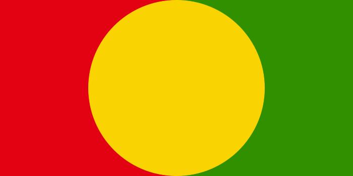 FDLR flag