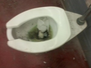 This nonworking toilet had been good for nothing but trash until it was finally repaired a few days ago.
