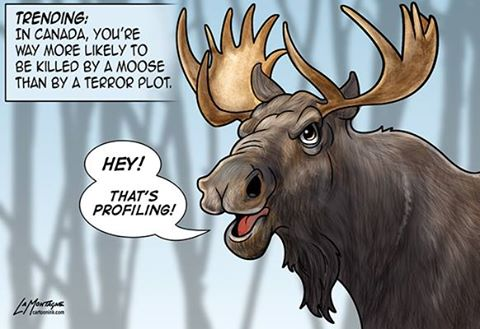 Canadians more likely killed by moose than terrorist cartoon