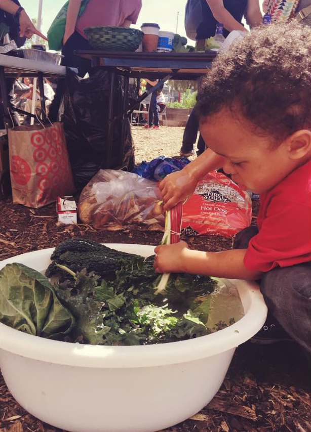 A little boy helps with food distribution by washing fresh kale from the garden. He's learning that eating these lovingly produced vegetables will help him grow big and strong.