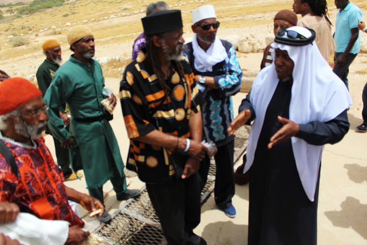 Sheikh Aid of the recognized Bedouin village of Segev Shalom explains to African Hebrew Israelites how Bedouins used to grow large bounties of corn and watermelon in this area, called Bir Malaka, before the Israeli government drove them off the land so that it could be used by the Israeli military. – Photo: David Sheen