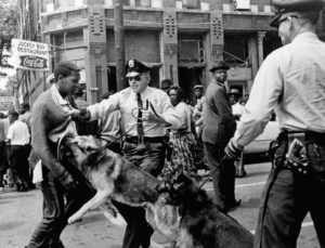 Police-dogs-attack-civil-rights-demonstrator-17-by-Bill-Hudson-AP-300x229, Oakland PD: 'We've let the dogs out!', Local News & Views