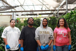 Students of the Sheriff's Five Keys Charter School learned horticulture and worked part time at the Southeast Greenhouses.