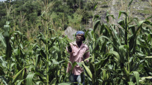 "Evans Gororo is a farmer near Chinamora, Zimbabwe, whose ""corn is as high as an elephant's eye,"" as the song says. Blacks are proving to be even more productive farmers than the whites who stole the land from them. – Photo: AFP"