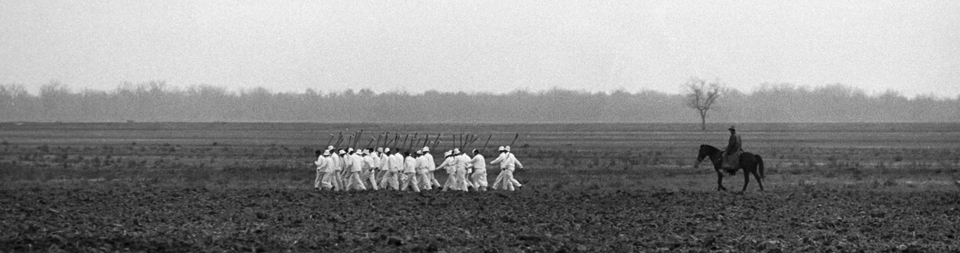 """A """"hoe squad"""" of enslaved prisoners marches to work in the morning mist. – Photo courtesy The Marshall Project"""