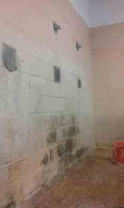 Another view of the filthy, moldy shower room at Holman Prison