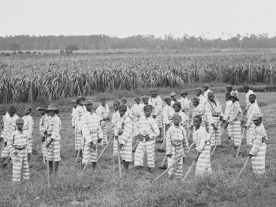 The only difference between these prisoners sent to work on a plantation after the Civil War – in a system known as convict leasing – and the slaves they had been before the Civil War is their stripes.