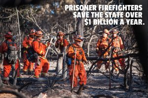 """California's """"liberal"""" attorney general opposed reducing vastly overcrowded prisons in California for fear the state would have to pay real wages to fight its wildfires. Though extremely dangerous, firefighting is considered a premium job in California for prisoners, and most of those chosen are not people of color."""