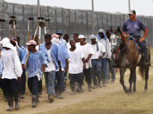 Nowhere more than in Angola do prisoners look more like slaves. Those who work in the fields are marched out every morning by the white overseer who supervises their work, for which they are paid nothing. In fancy wrought iron, the sign arching over the prison entrance says Angola Prison Farms.