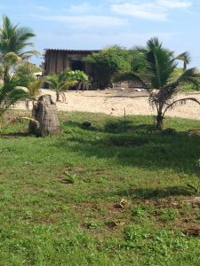 Barra-Vieja-Garifuna-Honduras-home-on-the-beach-1209-1916-by-Root-Causes-Delegation-225x300, Honduras: Government-supported tourism pushes Garifuna maroons off their land of 200 years, World News & Views