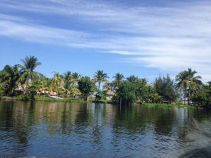 Barra-Vieja-Garifuna-Honduras-view-from-lagoon-1209-1916-by-Root-Causes-Delegation-300x225, Honduras: Government-supported tourism pushes Garifuna maroons off their land of 200 years, World News & Views