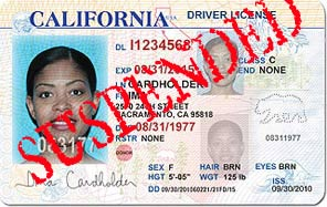 California-drivers-license-SUSPENDED, Driver's license amnesty: Reinstate your suspended DL before 3/31, Local News & Views