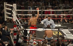 Ward-Kovalev-rematch-Kovalev-sits-on-ropes-Vegas-061717-by-Malaika-web-300x189, TKO! Dismantling the racist machine: Ward crushes Kovalev to retain the unified light heavyweight boxing title, Culture Currents