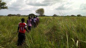 Ugandans-walking-through-lush-grassland-300x169, Solidarity Uganda: Rural Ugandans resist land grabbing and US-backed dictatorship, World News & Views