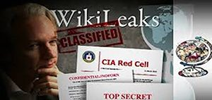 WikiLeaks-meme-300x142, Pacifica stands with Wikileaks and Julian Assange, National News & Views