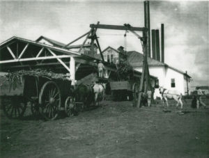 Prisoners-leased-to-Imperial-Sugar-Co.-unload-sugar-cane-in-Sugar-Land-cy-Rice-University-300x227, The Sugar Land 95: Help us protect the sacred burial ground of our ancestors in Texas, National News & Views