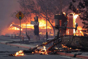 Welcome-to-Bearadise-sign-amid-raging-wildfire-in-Paradise-110818-by-Scott-Strazzante-SF-Chron-300x202, Welcome to Paradise, Local News & Views