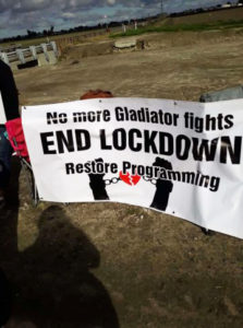 No-more-gladiator-fights-end-lockdown-restore-programming-protest-banner-0219-Corcoran-by-IWOC-223x300, Torture in Corcoran: Endless lockdown and gladiator fights, again, Behind Enemy Lines