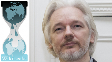 WikiLeaks-logo-Julian-Assange, UN Rapporteur on torture says Assange could die in prison, World News & Views