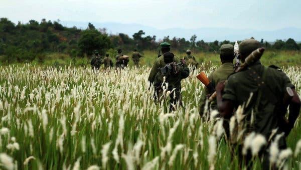 Virunga-National-Park-Congolese-rangers-on-armed-expedition, DRC's Virunga: Park, gorillas and rangers all under attack, World News & Views