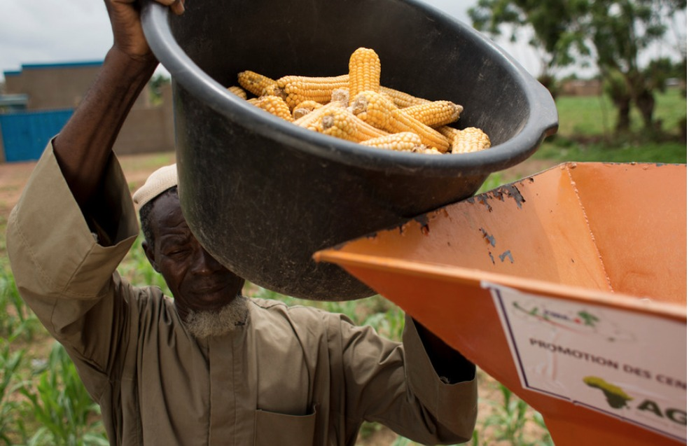 AGRA-pushes-small-African-farmers-to-sacrifice-food-crops-for-commercial-crops-esp-corn-1, The Gates Foundation's 'Green Revolution' in Africa: Agribusiness wins, small scale farmers lose, World News & Views