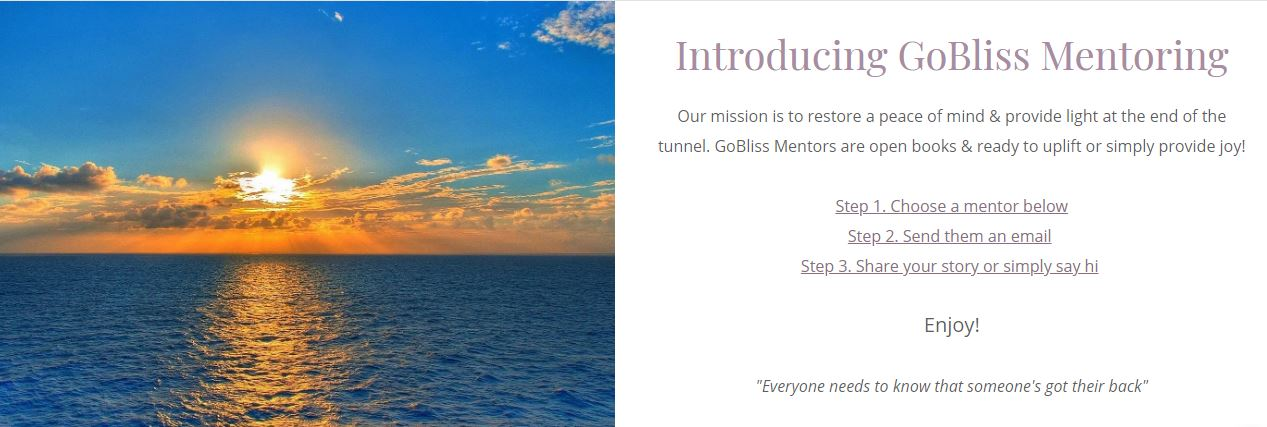 Introducing-GoBliss-Mentoring-poster, Black business networking site GlimmerofBliss.com created by young Bayview woman during shelter-in-place, Local News & Views