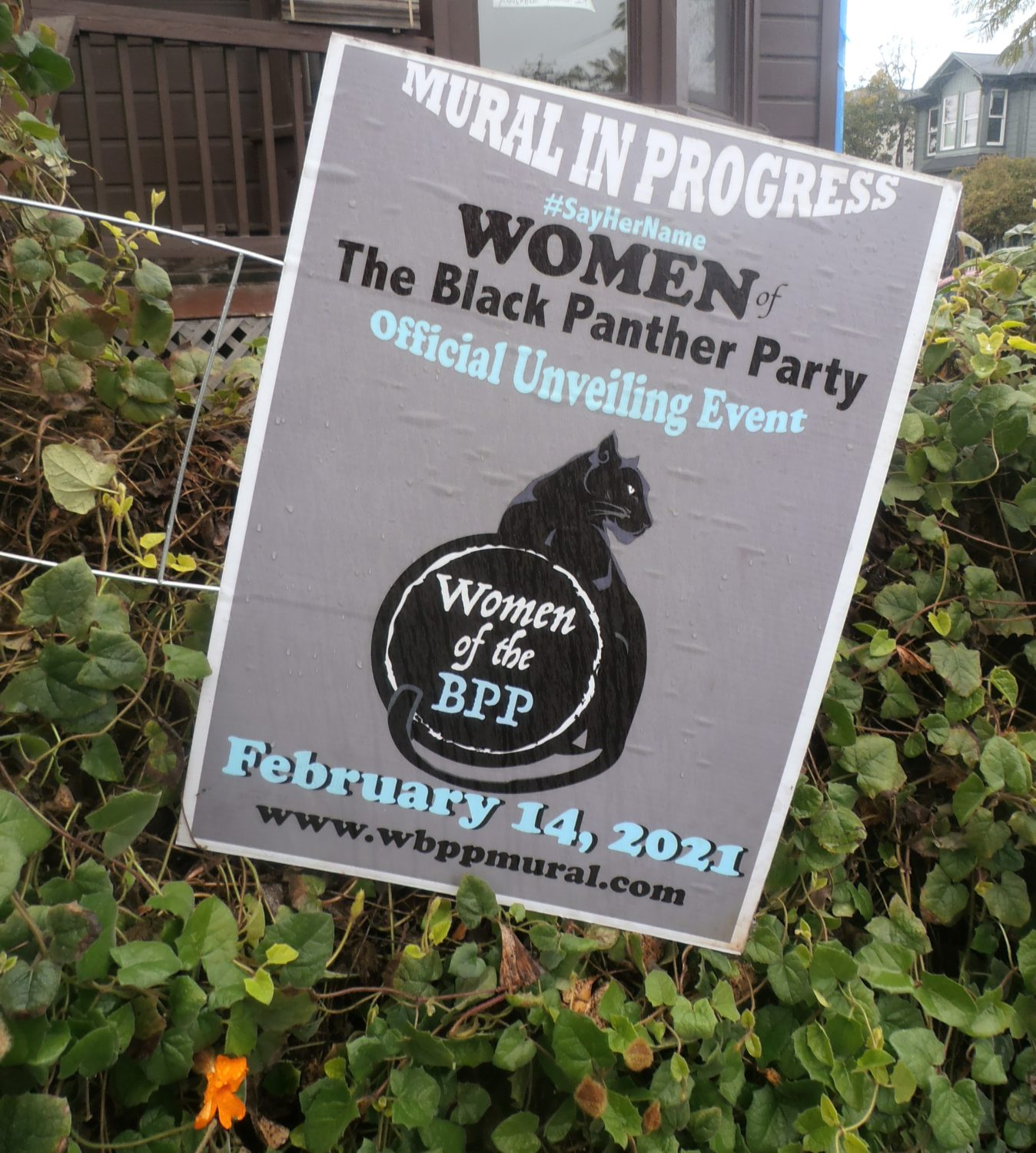 Women-of-Black-Panther-Party-to-be-unveiled-021421-by-Jahahara, Commemorating our sacred Alkebulan-Afrikan Story, Culture Currents