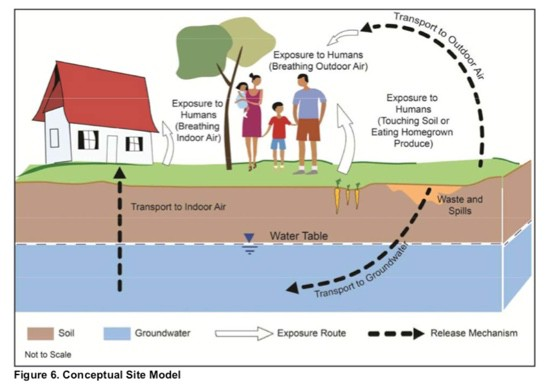 EPA-conceptual-model-of-pathways-of-exposure-to-toxins-to-sensitive-groups, Brain cancer biomonitoring in Bayview Hunters Point, Local News & Views