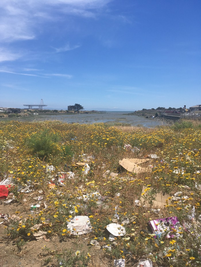 Yosemite-Slough-illegal-dumping-Superfund-site-2020-by-Ahimsa, Brain cancer biomonitoring in Bayview Hunters Point, Local News & Views