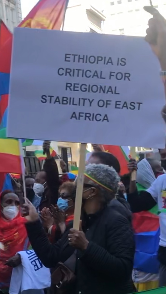 Eritrea-Ethiopia-rally-by-Dina-Tesfay-Regional-stability-032621, End the war on Africans: The truth about Eritrea and Ethiopia's brutal regimes, World News & Views