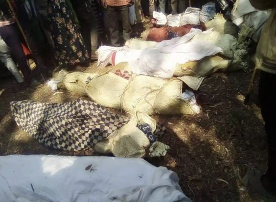 Genocide-in-Ethiopia-bodies-Dina-Tesfay, End the war on Africans: The truth about Eritrea and Ethiopia's brutal regimes, World News & Views