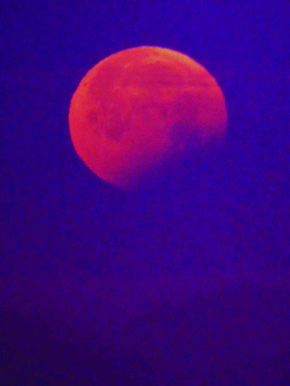 The-Blood-Moon-Lunar-Eclipse-at-Crown-Memorial-State-Beach-Alameda-by-Wanda-Sabir-052621-4.30am, Wanda's Picks: June 2021, Culture Currents